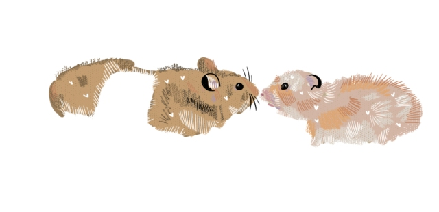 The Story House Hamsters